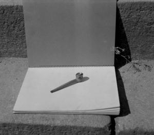 Pipe en buis à tête recouverte de métal, collectage de la mission Basse-Bretagne de 1939 |