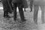 détail de la pose des pieds dans la ridée sur l'air 'quand j'avais rien à faire qu'une femme à chercher' ; 16 juillet à 17h30 ; Surzur ; cour du presbytère ; [photo originale 29]
