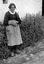Mlle Marie-Isabelle Le Gac ; 18 juillet à 19h ; Surzur ; Lamblat ; [photo originale 81]