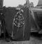 le bouquet d'octobre 1937 vu de dos pour montrer l'armature ; 21 juillet à 11h ; Surzur ; Kerlis ; [photo originale 101]
