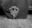 le bouquet fait par Mme Le Quintrec vu de dos pour montrer l'armature ; 21 juillet à 11h ; Surzur ; Kerlis ; [photo originale 103]