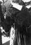 noce de Thérèse Jégo ; détail d'un châle ; 25 juillet à 12h15 ; Surzur ; dans une rue du bourg ; [photo originale 51]